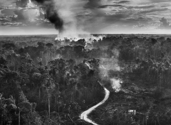 ©Sebastião Salgado, État de Acre, Brésil, 2016